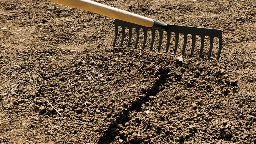 Grading Soil using Weed Rake