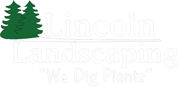 Lincoln Landscaping Company logo We Dig Plants