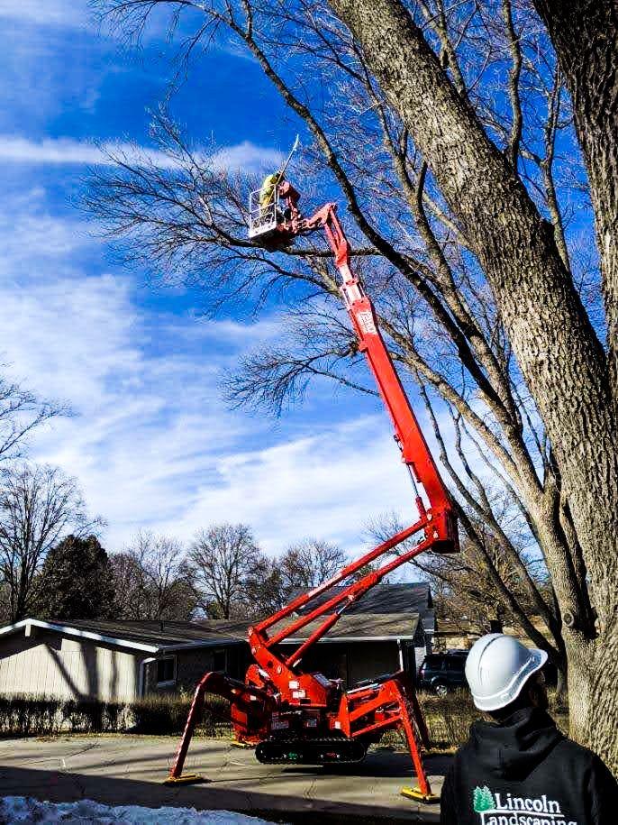 Tree Trimming in Lincoln Nebraska